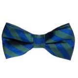 73202 Bow Tie Striped Green & Blue