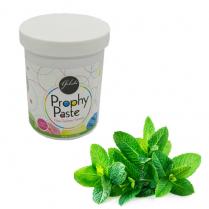 Gelato Prophy Paste Medium with Fluoride Mint Jar (340gm)