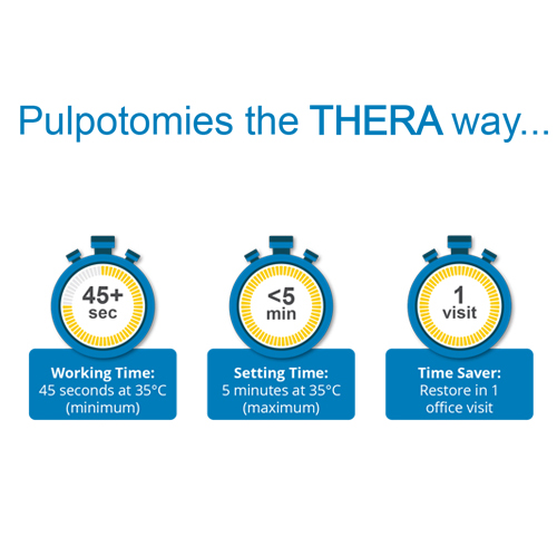 TheraCal PT Pulpotomy Treatment 4gm