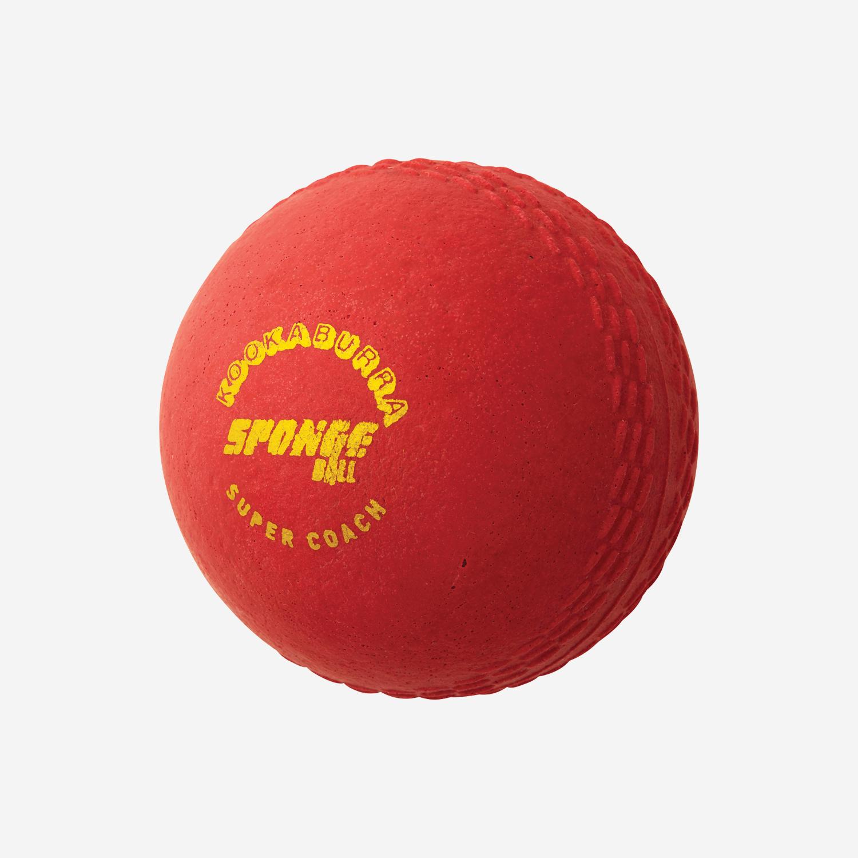 Super Coach Sponge Ball