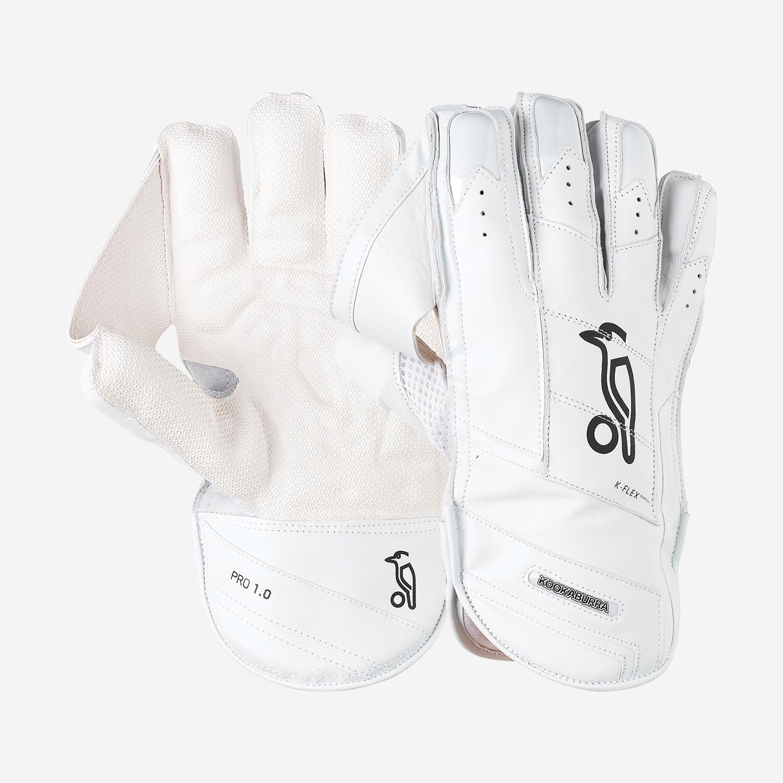 Pro 1.0 Wicket Keeping Gloves